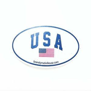 Brandy Melville Logo American Flag Sticker
